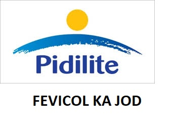 Fevicol Ka Jod At The Workplace Pidilite S Strategy To Bind Its People
